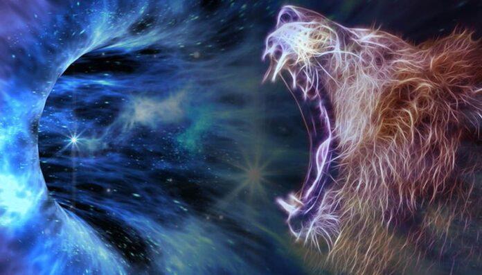 Lionsgate Portal